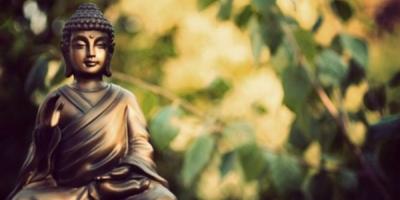 Lời Phật dạy: Lúa chín cúi đầu, người càng khiêm tốn càng nhiều phúc báo