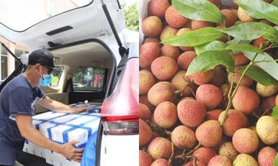 Người dân Đà Nẵng 'đánh' xe hơi mua vải thiều ủng hộ Bắc Giang, 1 ngày 'bay' sạch 17 tấn